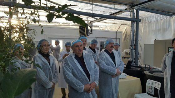 Первый замминистра сельского хозяйства России продегустировал якутские помидоры