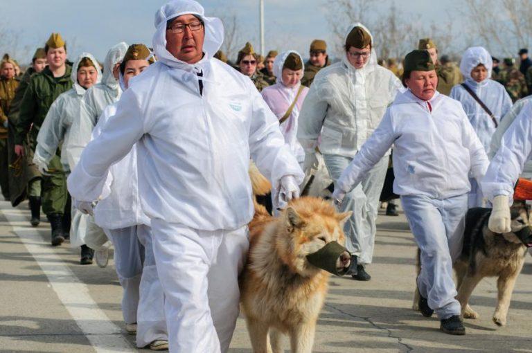 В память подвига 500 пограничников и 150 их собак, якутские собаководы и их питомцы пройдут парадом Победы