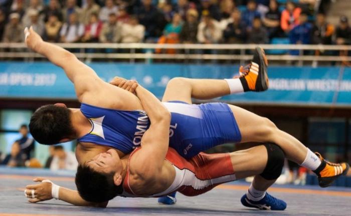 Якутяне привезли три медали с международного турнира Mongolia Open-2017