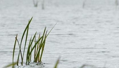 Трагическое начало лета: в пятницу в Якутии жертвами водной стихии стали трое несовершеннолетних