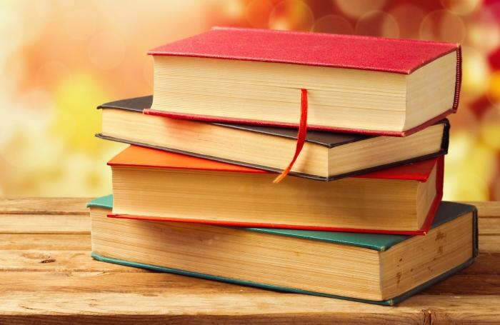 «Народный бюджет»: в Сквере им. К. Маркса появился «домик» для книг
