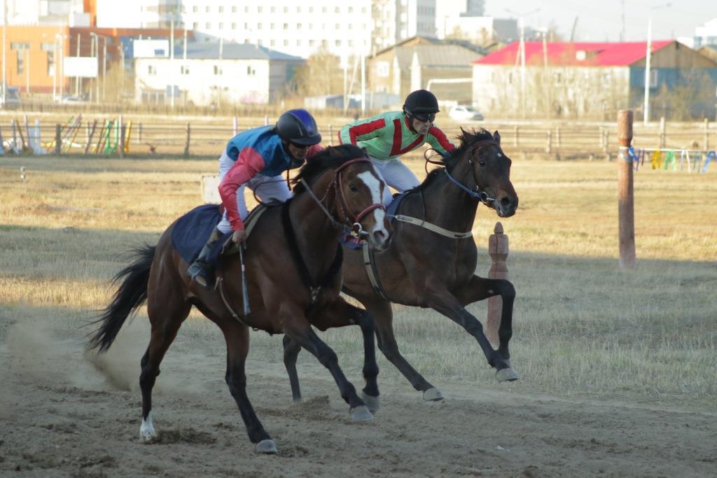 Конные скачки на призы Председателя Правительства Республик Саха (Якутия).