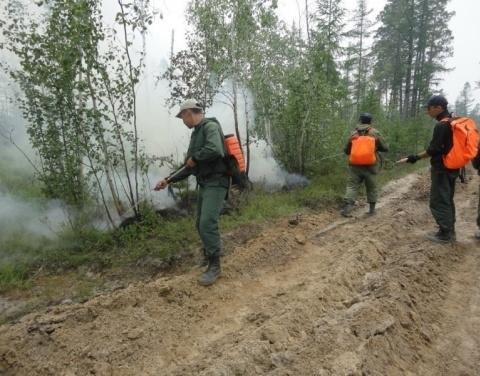 В Якутии введен режим чрезвычайной ситуации в связи с лесными пожарами