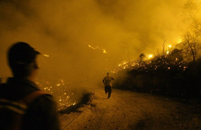 Найдено тело мужчины при тушении лесного пожара