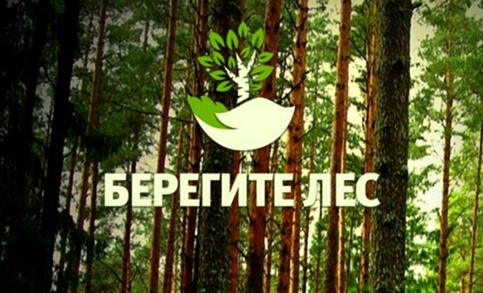 В радиусе 100 км от города Якутска действующих лесных пожаров нет