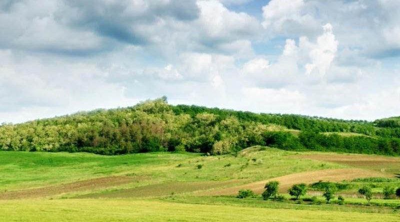 «Дальневосточные гектары» можно будет купить или продать не раньше, чем через 4,5 года