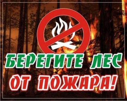 МЧС: соблюдайте правила пожарной безопасности в лесах!