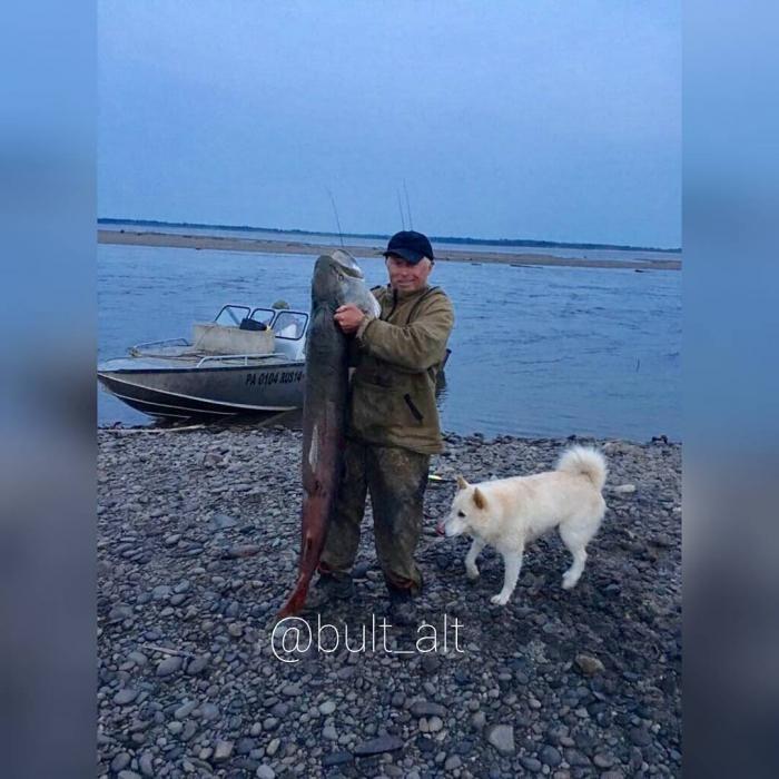 Житель Якутии поймал на спиннинг 55-килограммового тайменя