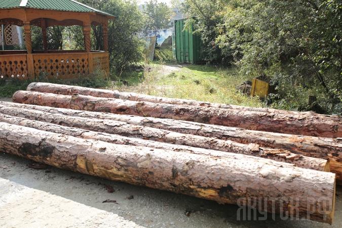 День города: В Парке культуры и отдыха стартовал конкурс по художественной резьбе из дерева «Лесная сказка»