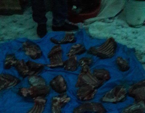 В Мегино-Кангаласском улусе выявлены факты браконьерства