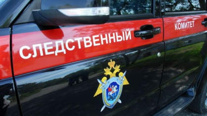 В Якутии возбуждено уголовное дело по факту нападения животных на ребёнка