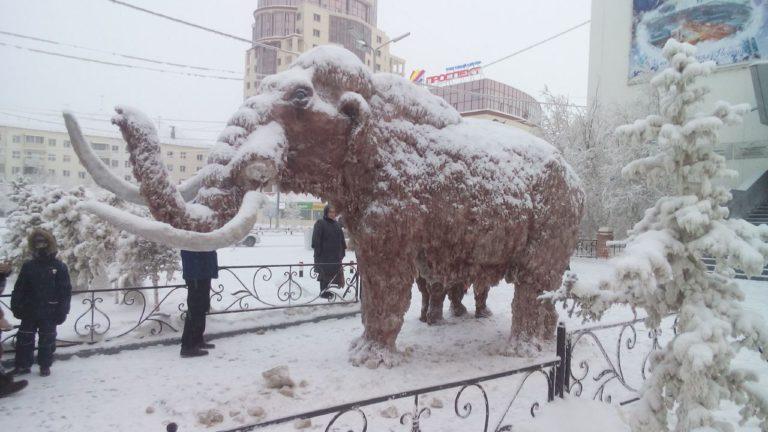 В Якутске у мамонта отломили часть бивня