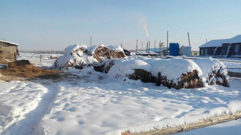 В Нюрбинском районе работникам сельскохозяйственного кооператива не выплачивали зарплату