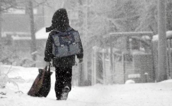 В сети собирают подписи за отмену шестидневки в школах регионов Крайнего Севера