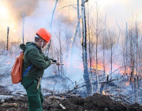 В Якутии на треть снизилось количество пожаров
