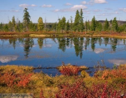 Ленское управление Росрыболовства: «Отдельные озёра будут закрепляться исключительно для искусственного разведения рыбы»