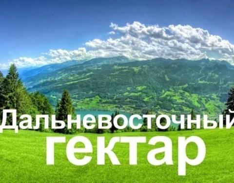 Почти 190 миллионов рублей получили участники программы «Дальневосточный гектар»