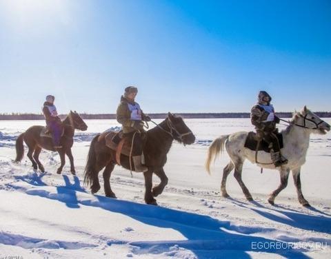 Егор Борисов встретился с коневодами республики по случаю их профессионального праздника