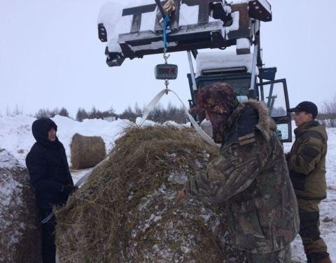 Из Магаданской области в Якутию доставят 100 тонн сена