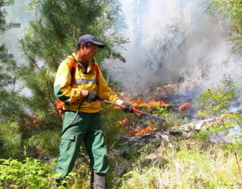 В Якутии действуют 9 лесных пожаров