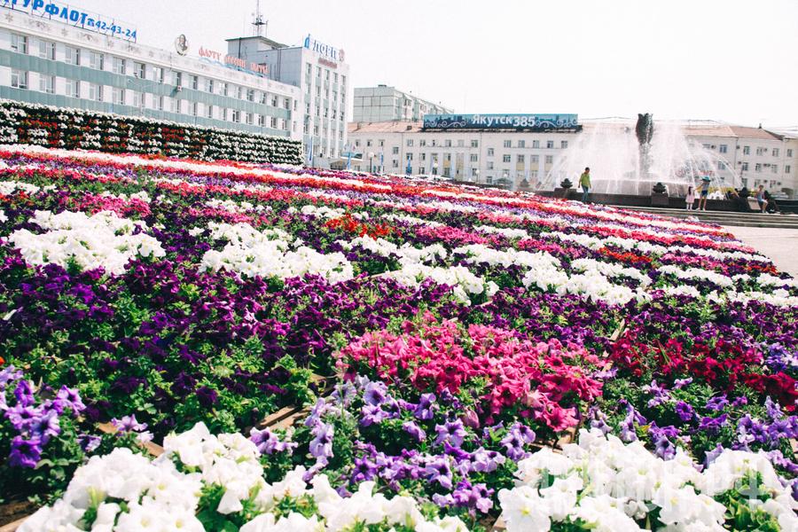 Цветущий Якутск: Приглашаем на ярмарку цветов и конкурс флористов