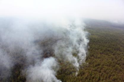 В Якутии возбуждены уголовные дела по фактам халатности при ликвидации лесных пожаров