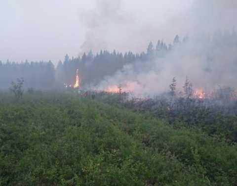В Якутии ликвидированы 4 лесных пожара