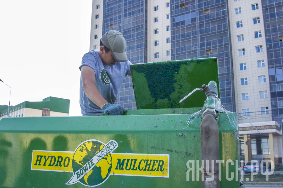 Год новаторства: В Якутске испытывают новую технологию посева газонов