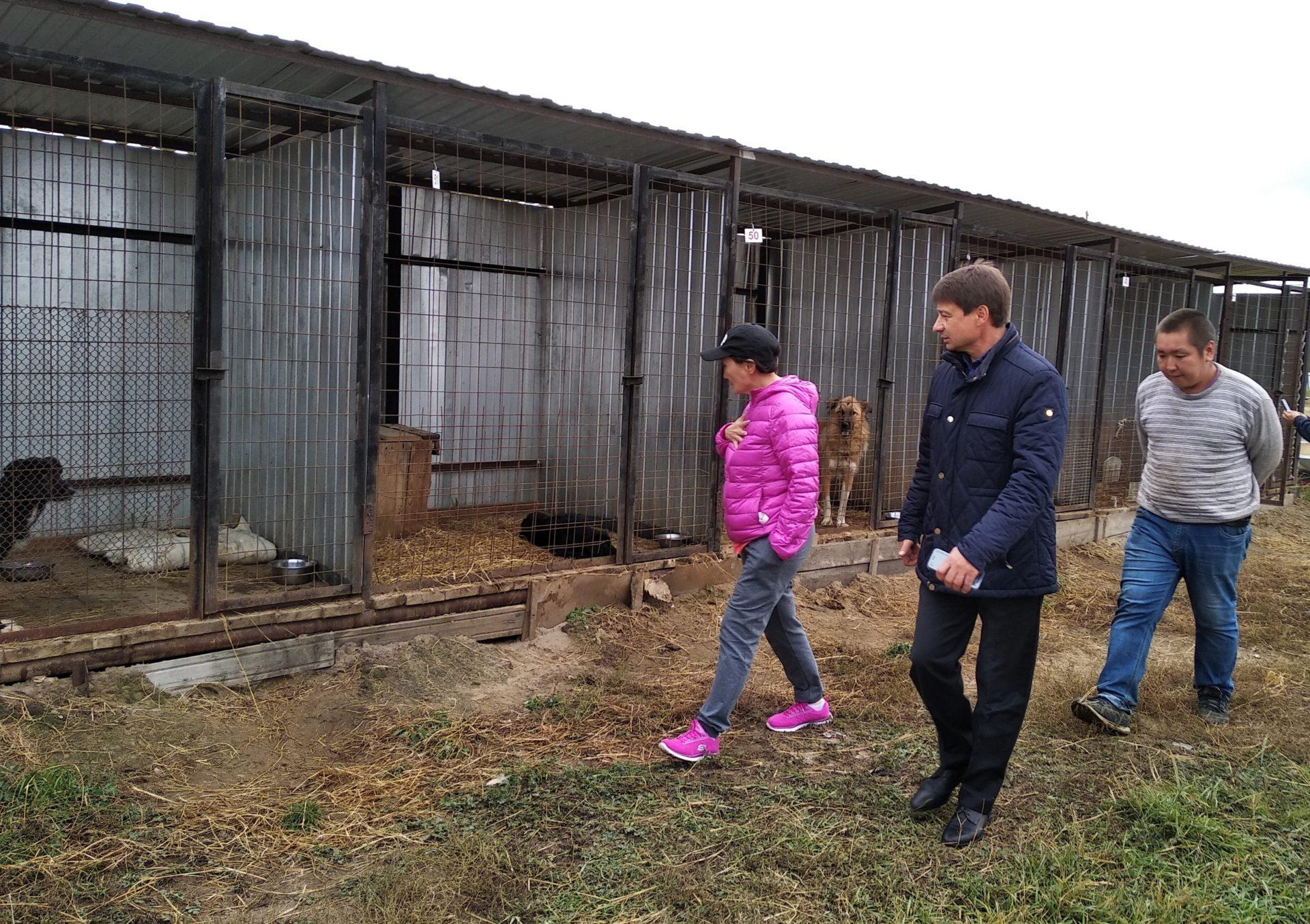 Сардана Авксентьева посетила пункт передержки безнадзорных животных