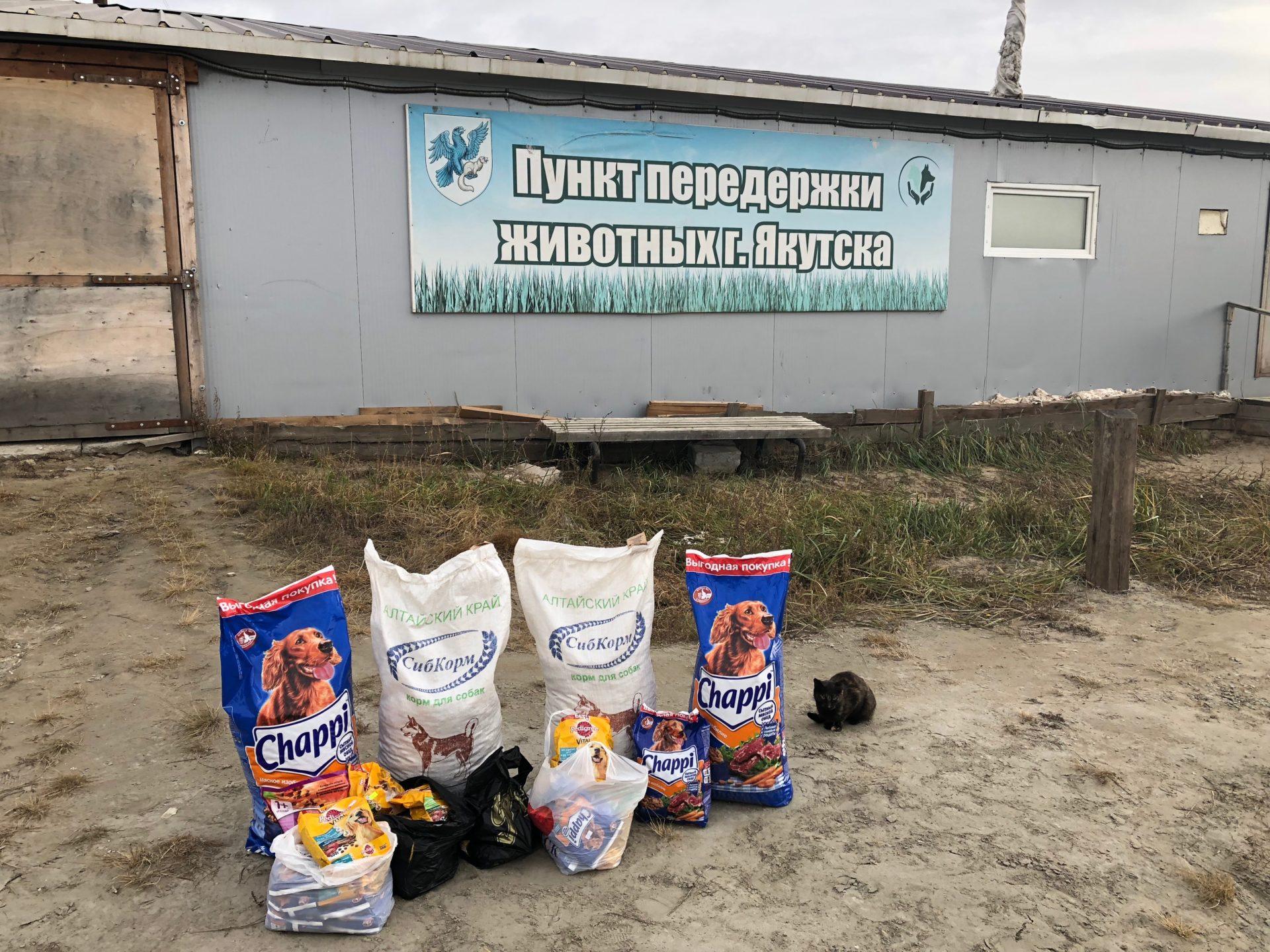 Предприятия и учреждения Губинского округа собрали 68 кг корма для Пункта передержки животных