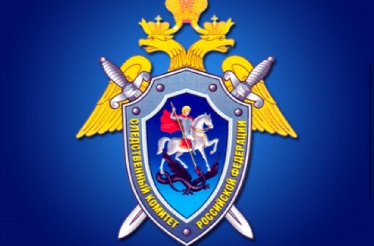 Якутские школьники могут принять участие в конкурсе «Юный следователь», проводимом Следственным комитетом России