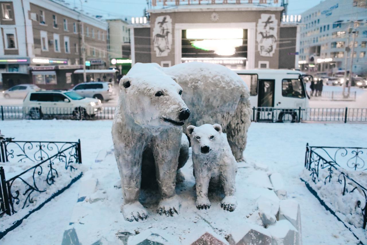 В центре Якутска появилась семья белых медведей