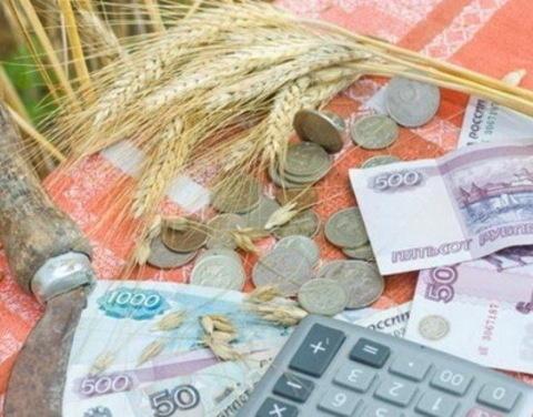 Объем господдержки малых форм хозяйствования в 2019 году увеличен в 1,4 раза – до 15,3 млрд рублей