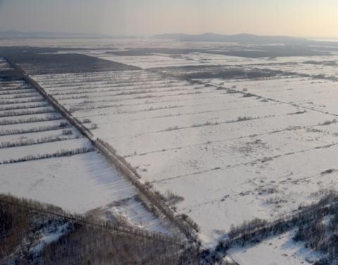 В Якутии участники дальневосточного гектара получили поддержку на сумму более 40 млн. рублей