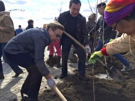 Единороссы высадят три миллиона деревьев в рамках акции по озеленению городов