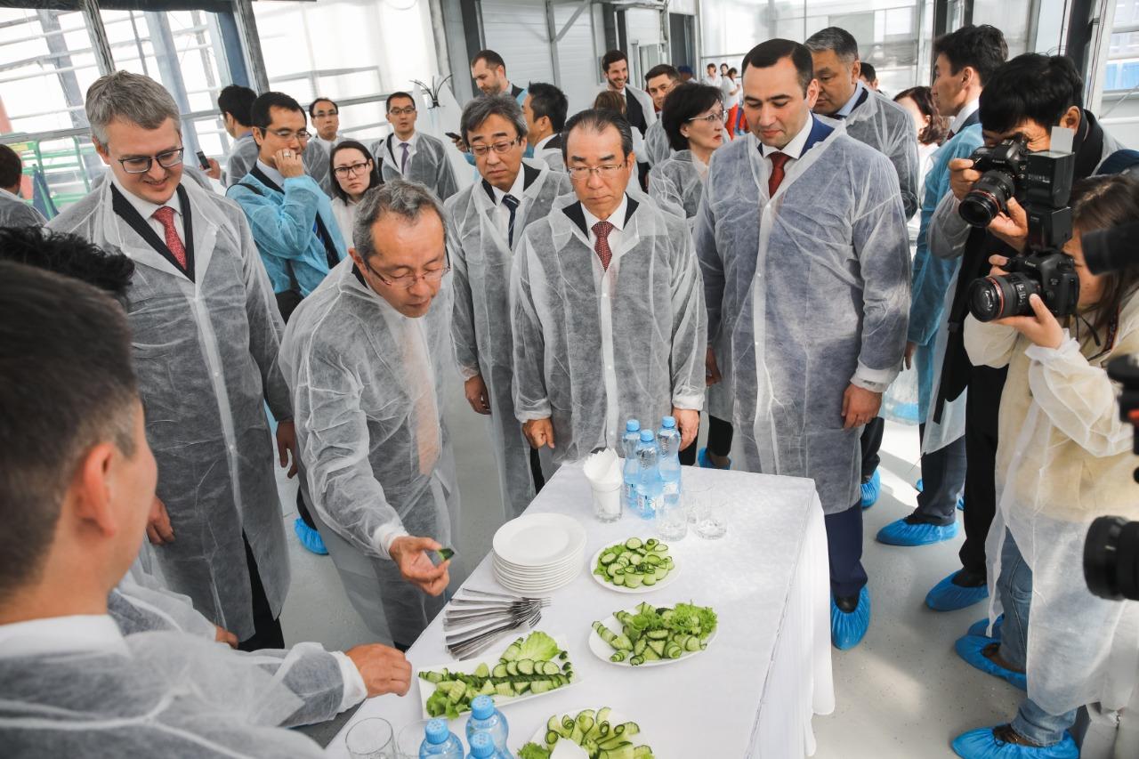 В Якутске открыли вторую очередь круглогодичного тепличного комплекса «Саюри»