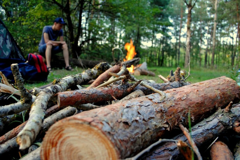 Граждане при пребывании в лесах обязаны соблюдать требования пожарной безопасности
