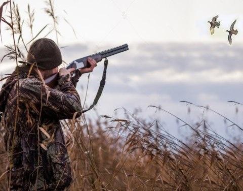 В Якутии начинается весенний сезон охоты на пернатую дичь