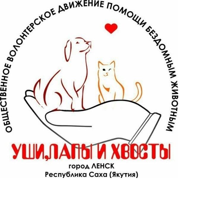 С 1 июля в Ленском районе начинается реализация проекта обладателя Президентского гранта РФ