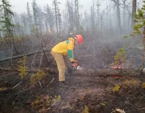 Айсен Николаев объявил на территории Якутии режим ЧС регионального характера в связи с лесными пожарами