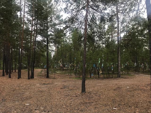 На 28 км Покровска тракта грибники обнаружили место религиозного обряда