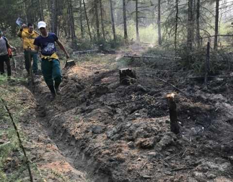 Оперативная информация о лесных пожарах на 13 августа