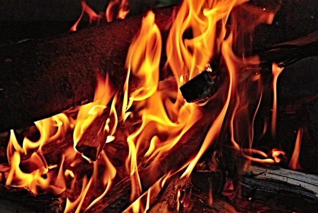 Иван ПОЛУШКИН, генеральный директор ООО «Стройкон» отрекся от местности, где произошел пожар
