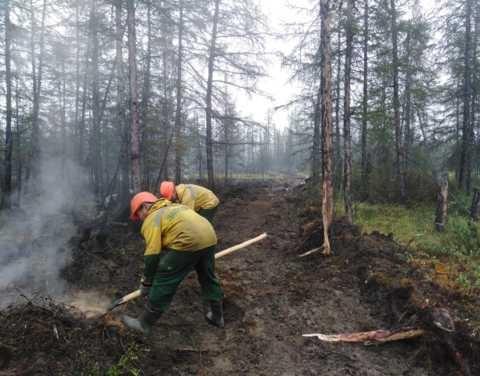 Оперативная информация о лесных пожарах на 28 августа