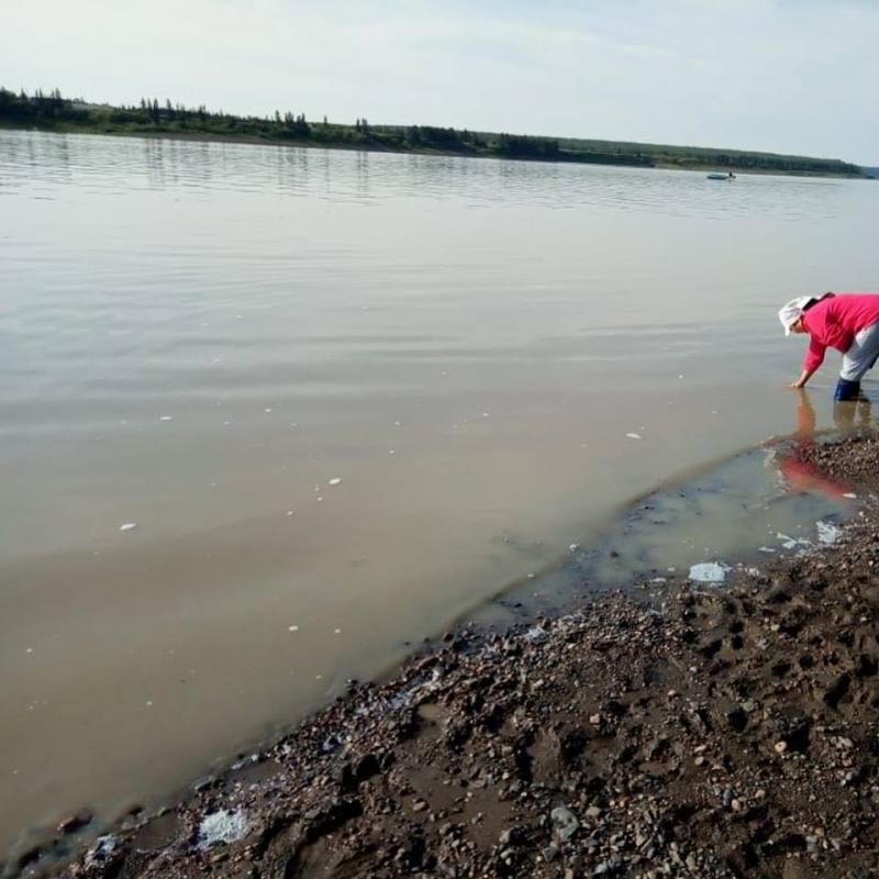 Решение Мирнинского суда о признании АЛРОСА виновной в нарушении правил охраны водных объектов вступило в законную силу