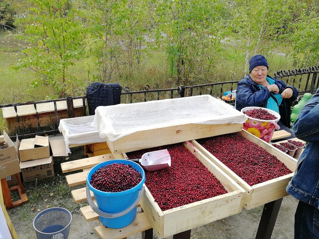 Вкуснейший репортаж: первая ярмарка выходного дня в Якутске