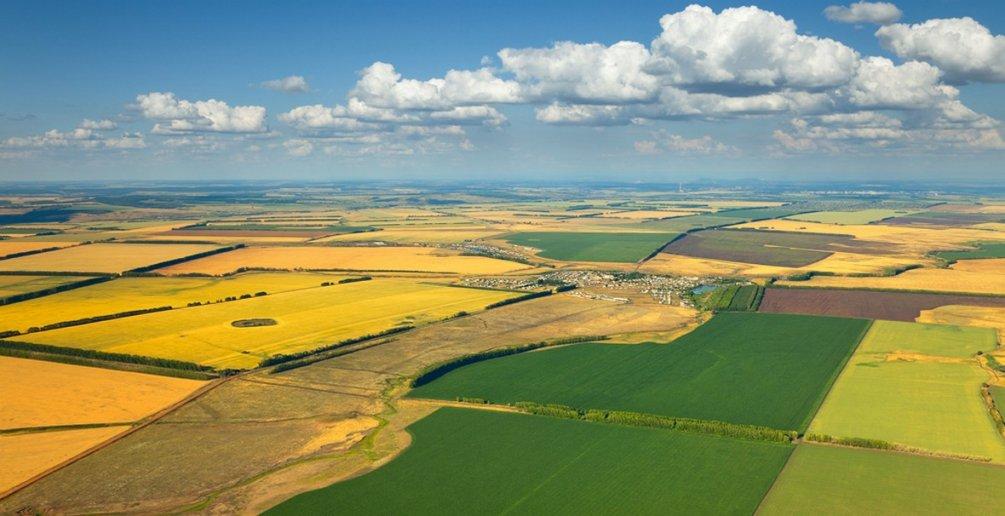 Россельхозбанк развивает Центр отраслевой экспертизы