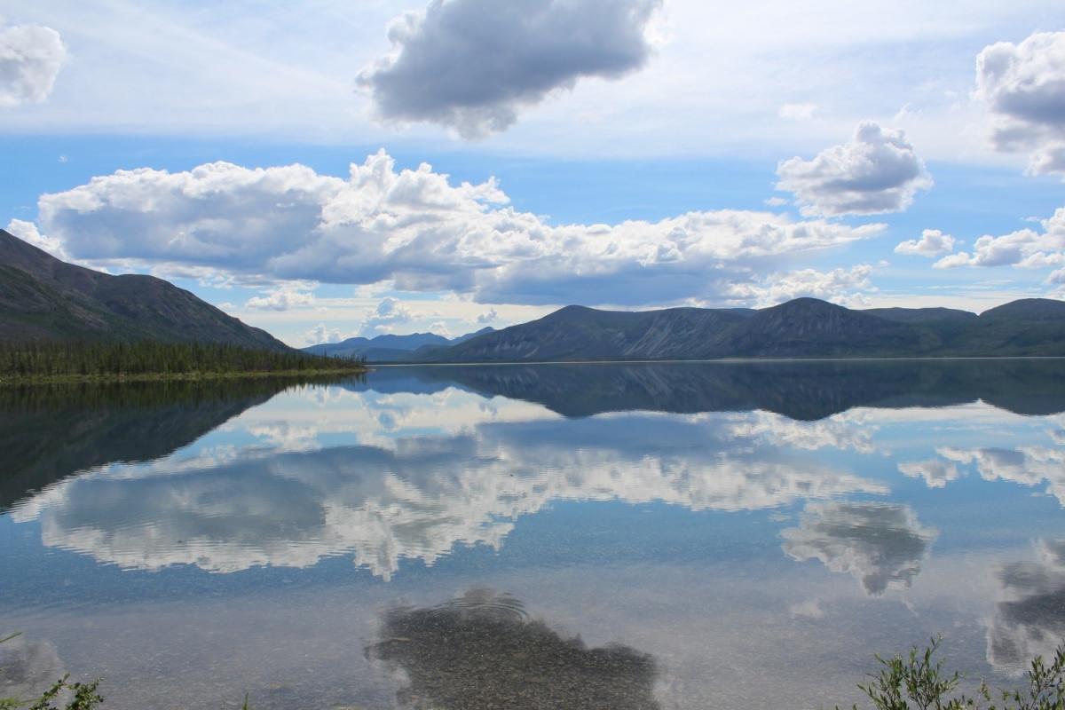 Трагедия с нападением медведя на человека произошла в районе озера Лабынкыр