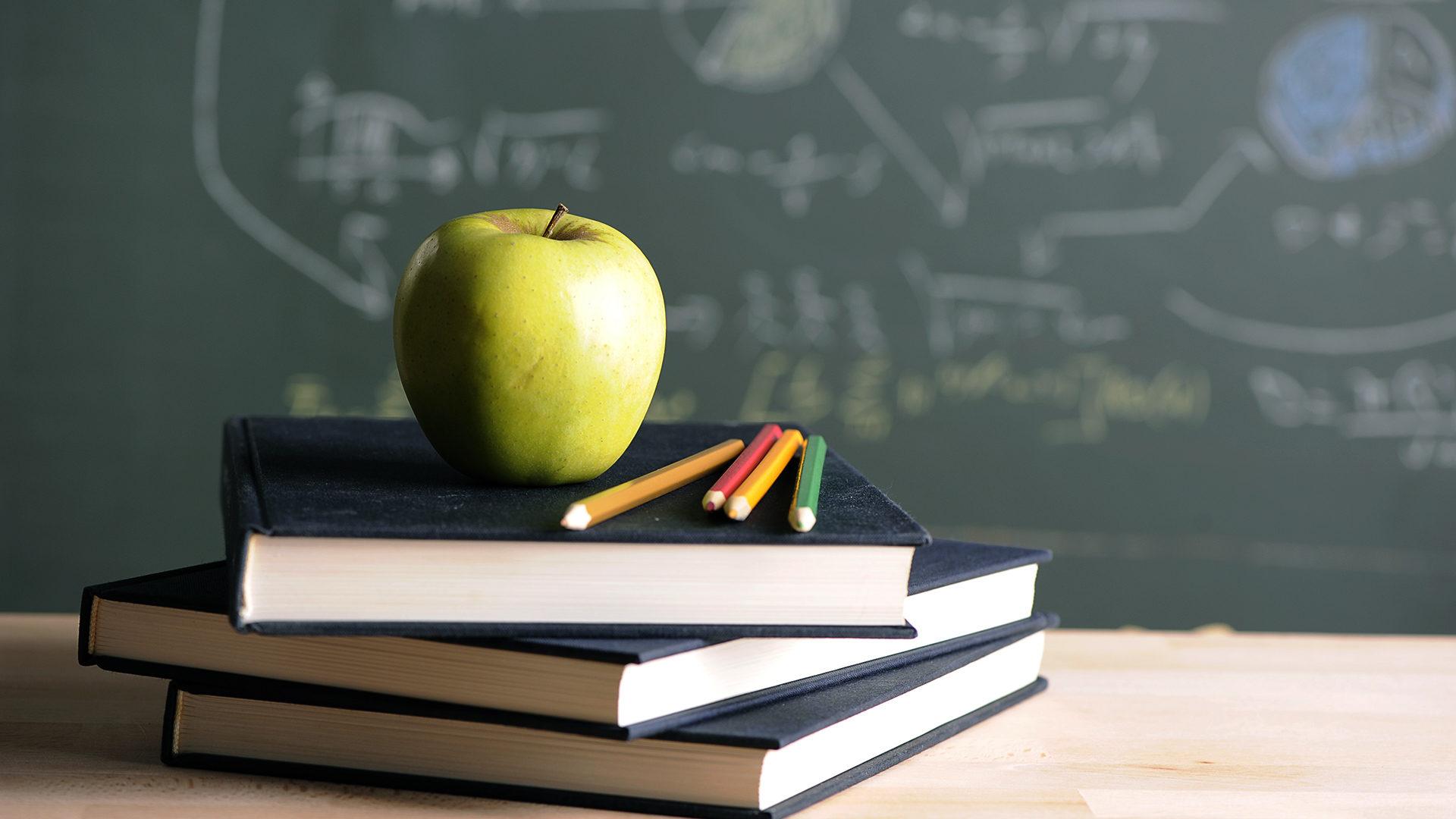 Мэр об организации учебного процесса в школах: денег катастрофически не хватает
