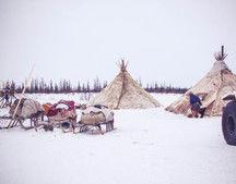 Исследователей в Арктике обяжут учитывать традиционные знания коренных народов